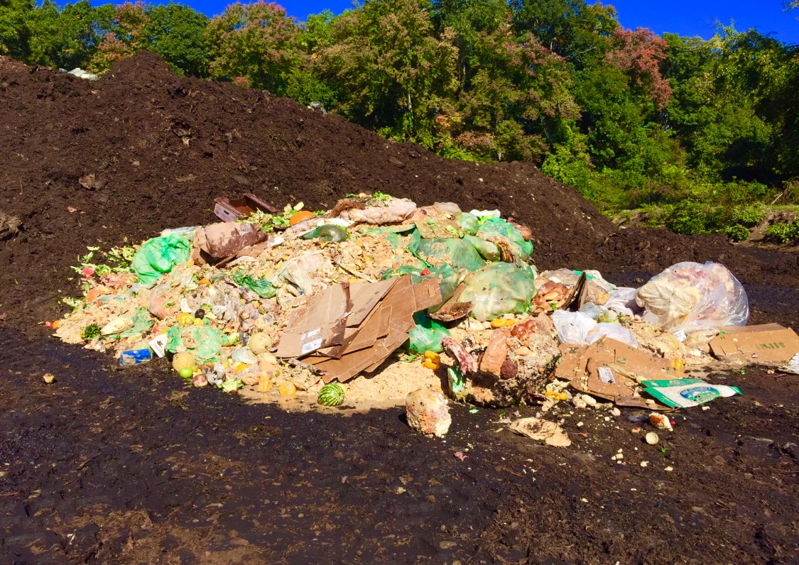 orifice food waste recycling